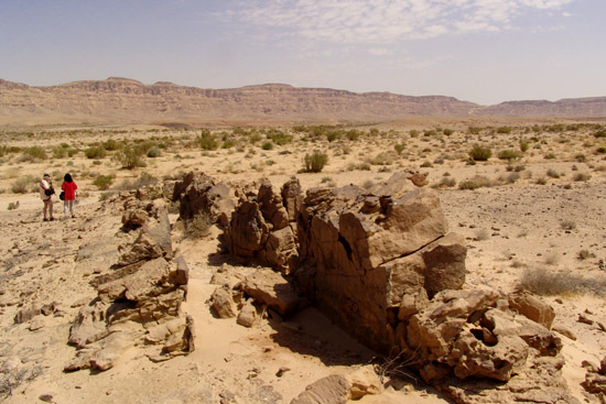 Mahmal Valley, Ramon Crater, tours in the Negev